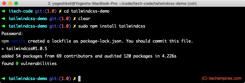 Install TailWind using npm