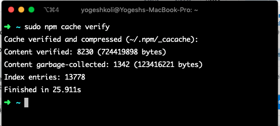 Verifying npm cache